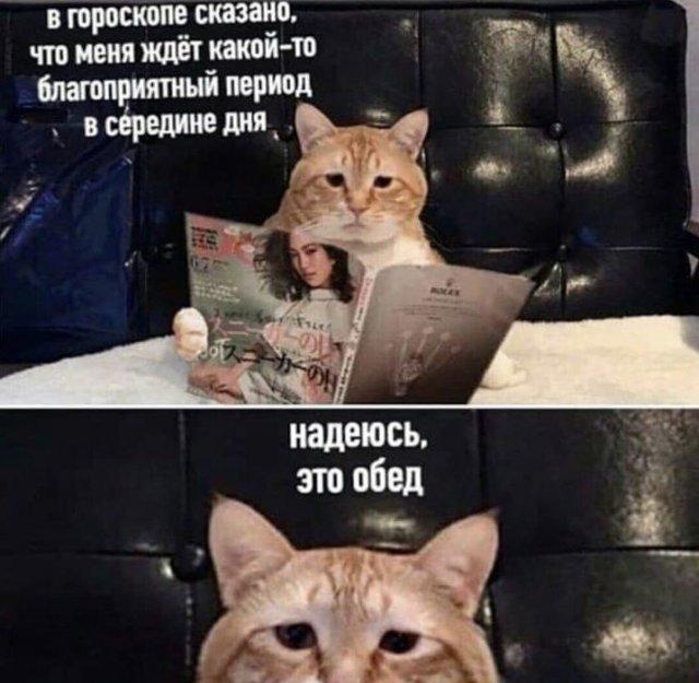 Мемы и шутки из Сети (30 фото)