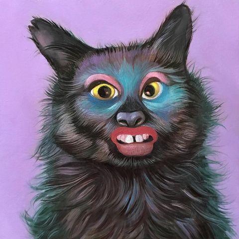 Уродские коты Грегори Якобсена (52 фото)