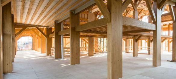 В Москве построят многоэтажный дом из дерева