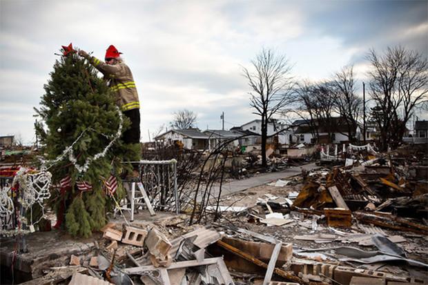 Елочка, зажгись! 14 фотографий новогодних разрушений