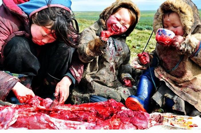 Мясной деликатес Севера, который нельзя пробовать туристам
