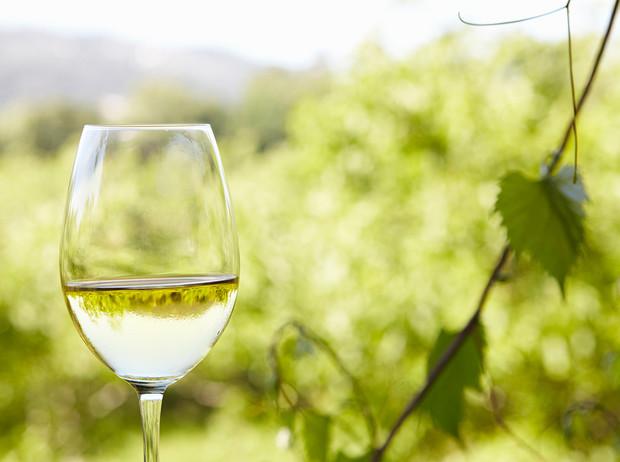 Зеленое вино что такое Vinho Verde и почему оно такое редкое (у нас)