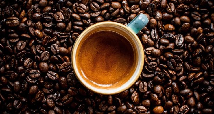 Плохие новости изменение климата сделает кофе безвкусным