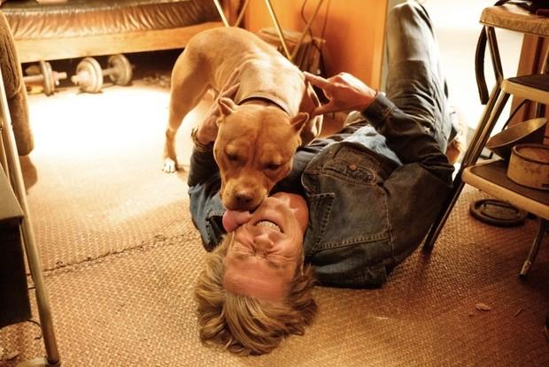 Почему собака тебя лижет настоящая и не очень приятная причина
