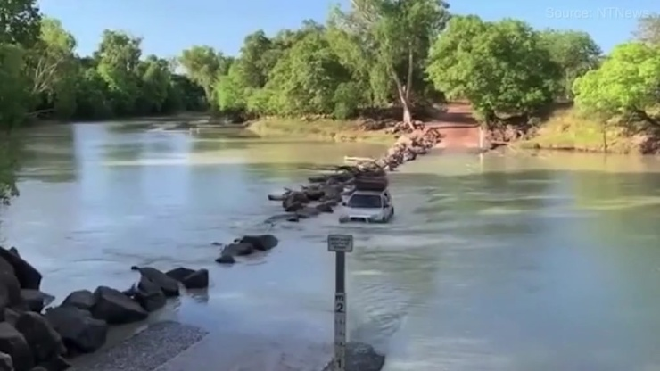 Наехал на крокодила