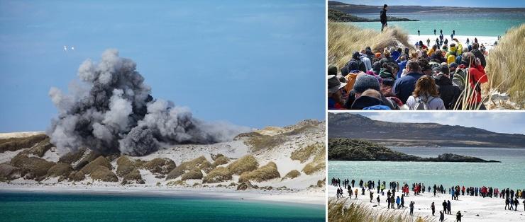 Последние мины на Фолклендских островах уничтожены впервые почти за 40 лет люди гуляли по пляжу  фото  видео
