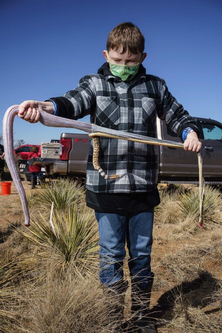 Жуткие кадры с фестиваля змей в Техасе