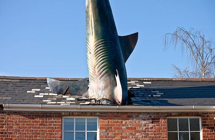 Кому захотелось, чтобы из крыши его дома торчал акулий хвост
