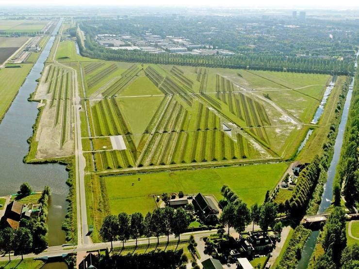 Зачем на поле сделали холмы с траншеями? (7 фото)