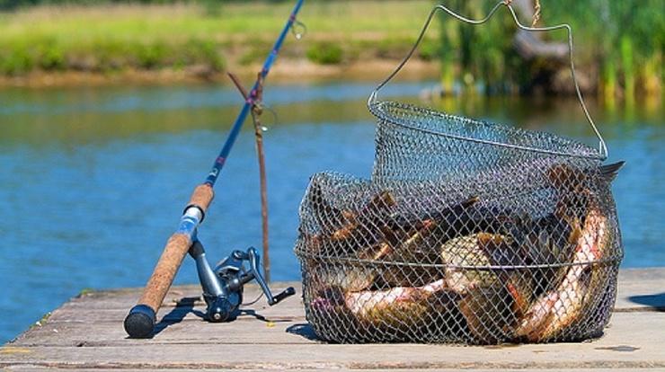 Диалоги о Рыбалке (15 фото,видео)