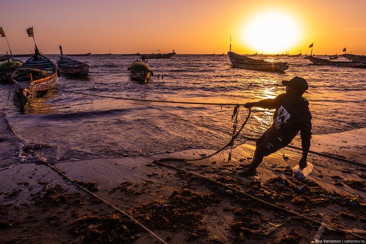 Катастрофа в Сенегале. Как выживают рыбаки без рыбы?  фото