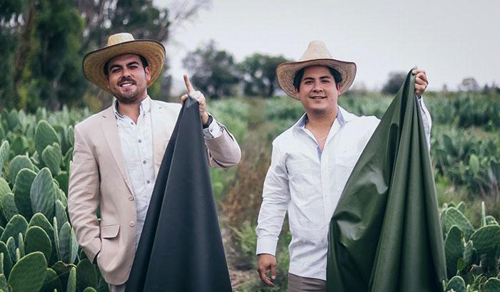 Два мексиканца придумали натуральную веганскую альтернативу коже. Они предлагают делать её из кактусов!  фото  видео