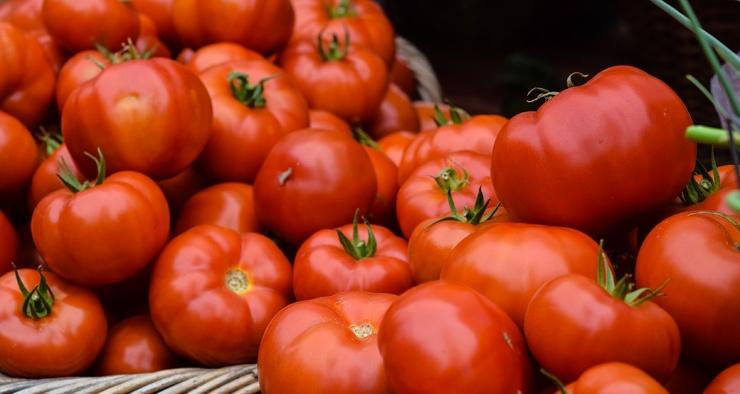 Что такое томат на самом деле  овощ, ягода или фрукт
