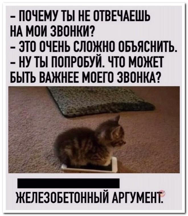 Забавные комментарии из социальных сетей от 01.09