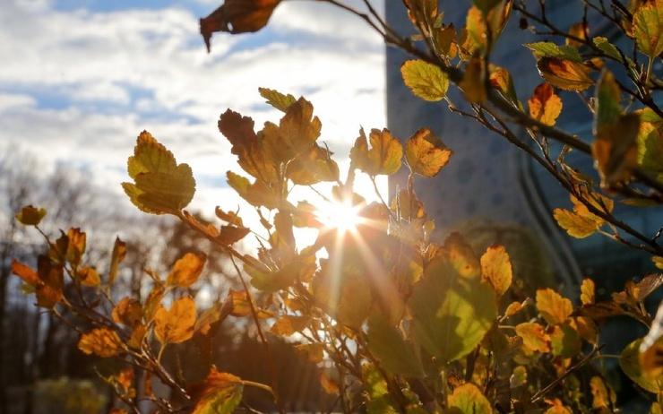 Гидрометцентр пообещал россиянам аномально теплую погоду в октябре