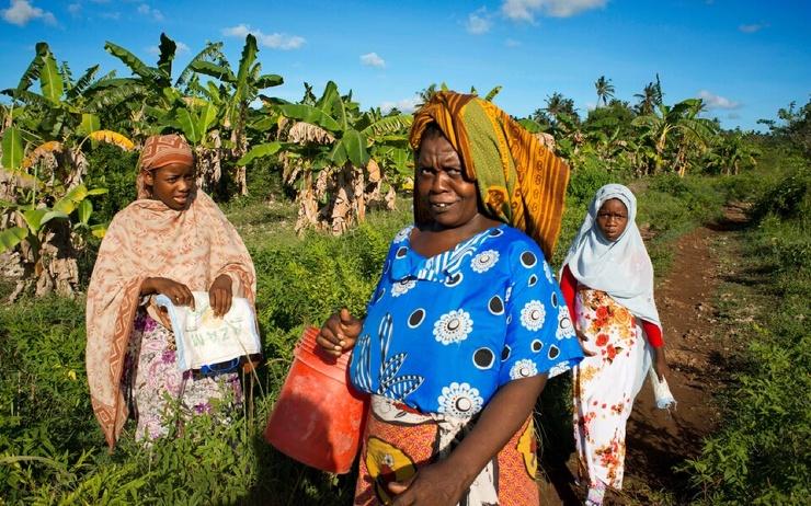 Власти Танзании разрешат продолжить обучение девушкам, которые бросили школу из-за беременности. С 1960-х годов это было законодательно запрещено