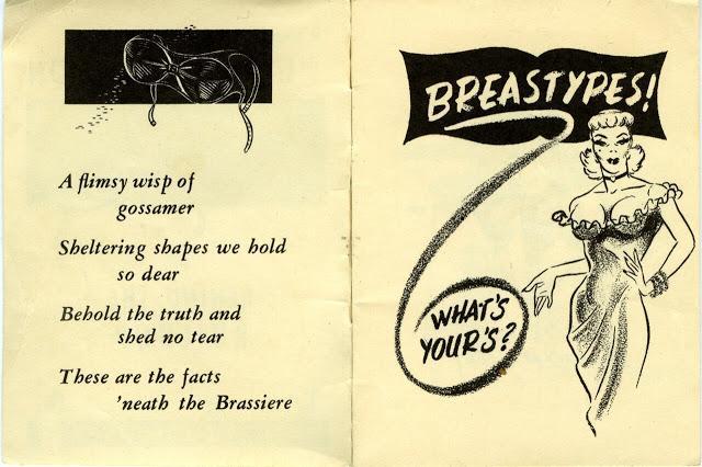Уши спаниеля, Клюква, Пчелиные укусы Breastypes  возмутительный гид по женской груди из 40-х (10 фото)