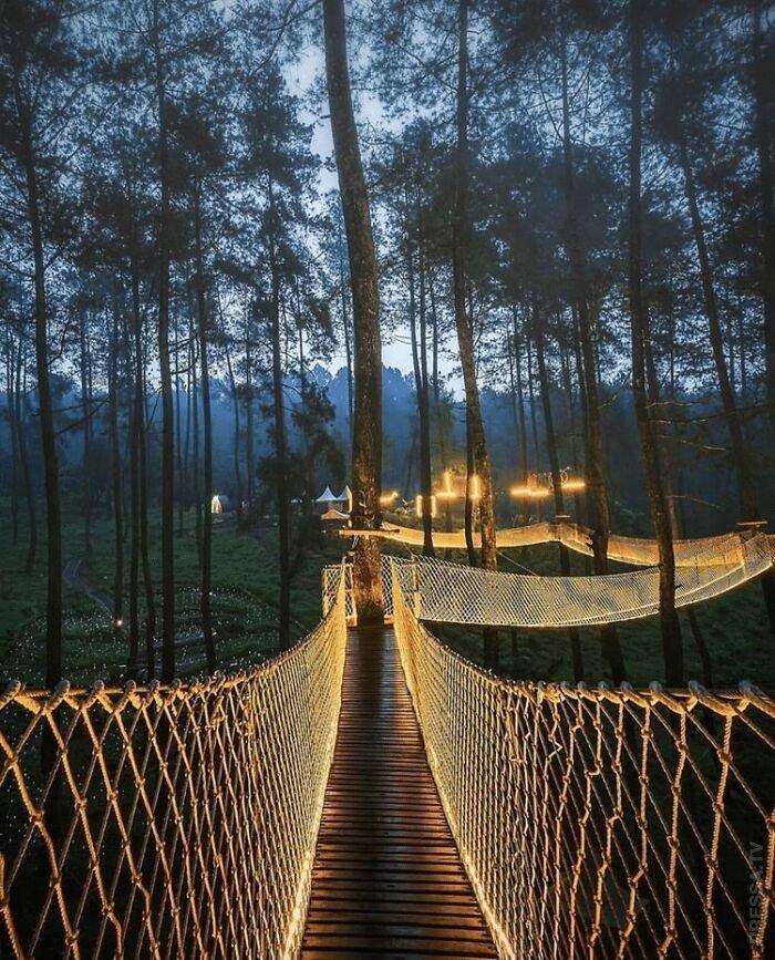 Сказочный светящийся мост в Индонезии