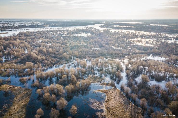 Впечатляющее зрелище на Полесье разлилась Припять (44 фото)