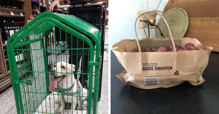 17 случаев, когда супермаркеты порадовали покупателей своим сервисом, за который смело можно ставить 5 звёзд (17 фото)
