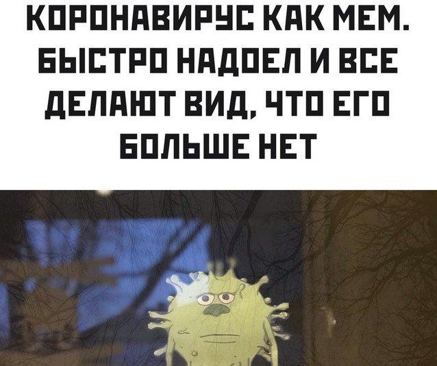 Коронавирус, голосование и протесты лучшие мемы из Сети (13 фото)
