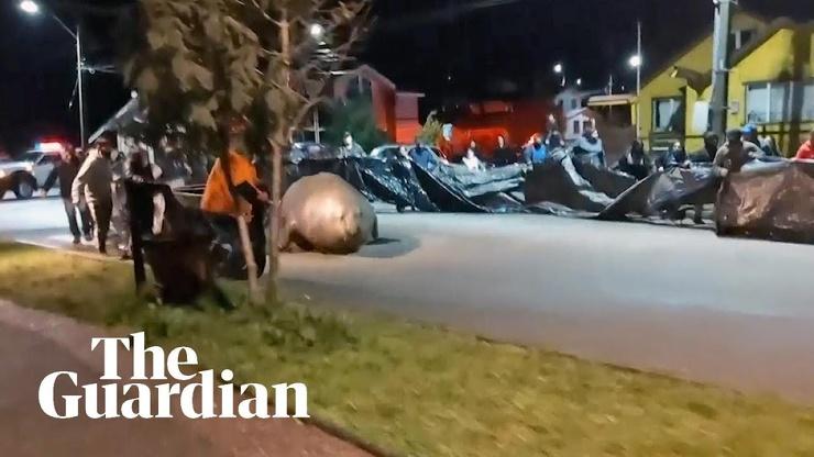В Чили на улицы города вышел двухтонный морской слон. Жители организовали спасательную операцию и вернули его в море (видео)
