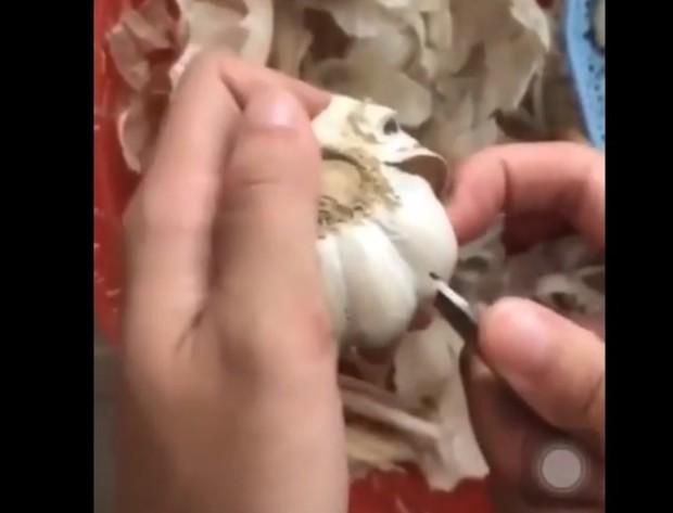 Лайфхак почистить чеснок просто и быстро (видео)