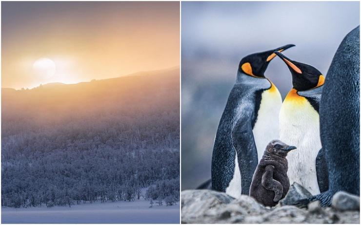Холодные места нашей планеты на снимках Малин Ханнинг