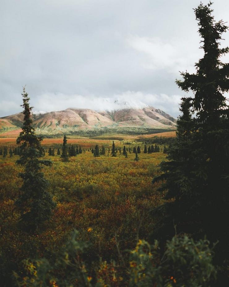 Красивая природа Аляски на фотографиях Патрика Туна