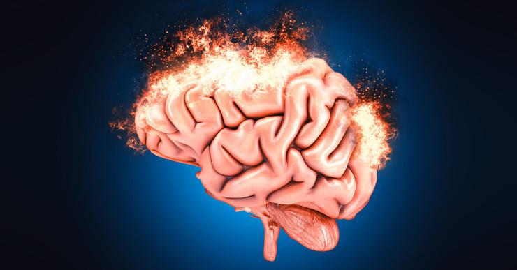 Что происходит с нашим мозгом, когда мы занимаемся сексом?