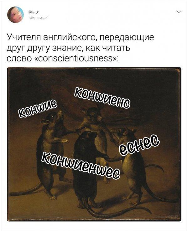 Подборка забавных твитов об изучении иностранных языков (18 фото)