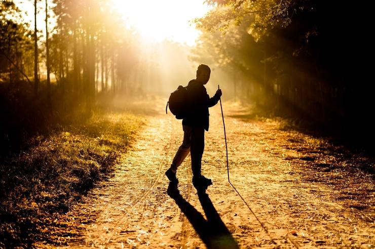 7000 шагов в день добавляют годы жизни