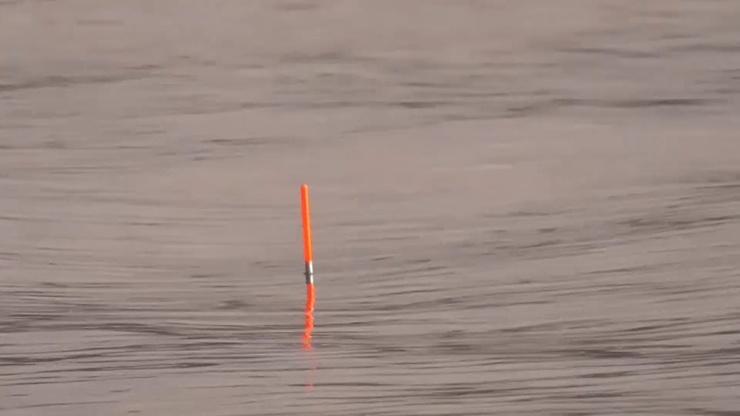 Закинул ПОПЛАВОК и поперло... азартная рыбалка (видео)