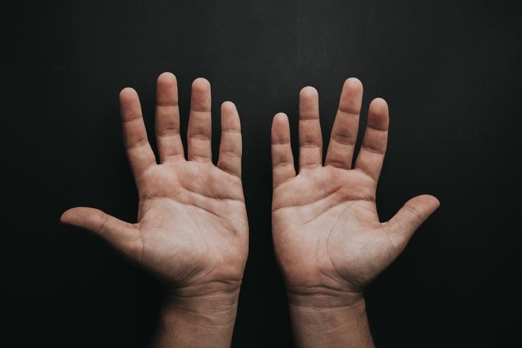 Почему пальцы человека имеют разную длину