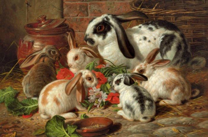 Почему на Руси употребление в пищу мяса кролика считалось большим грехом