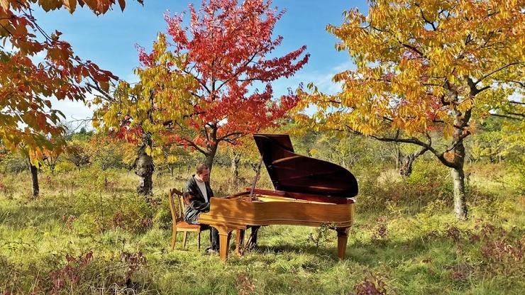 Композитор Мартин Кольштедт играет в лесу музыку с нового грандиозного  альбома (видео)