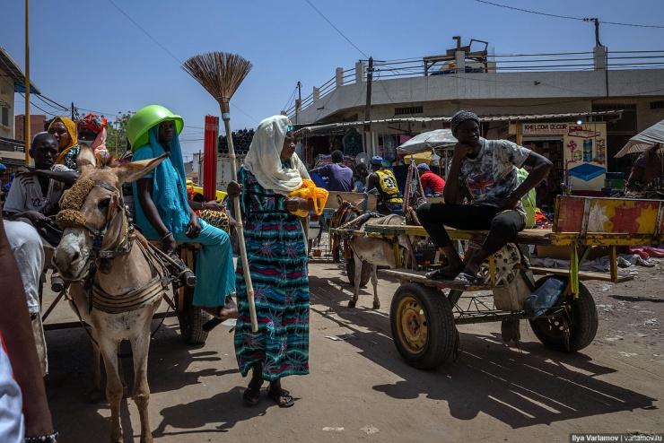 Туба религиозный центр Сенегала, который живёт по своим законам (43 фото)