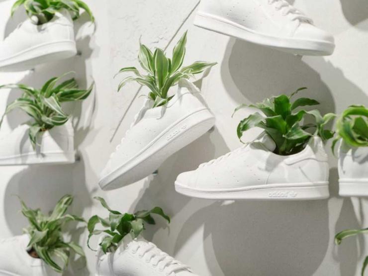 Adidas выпустит экокроссовки из грибной кожи