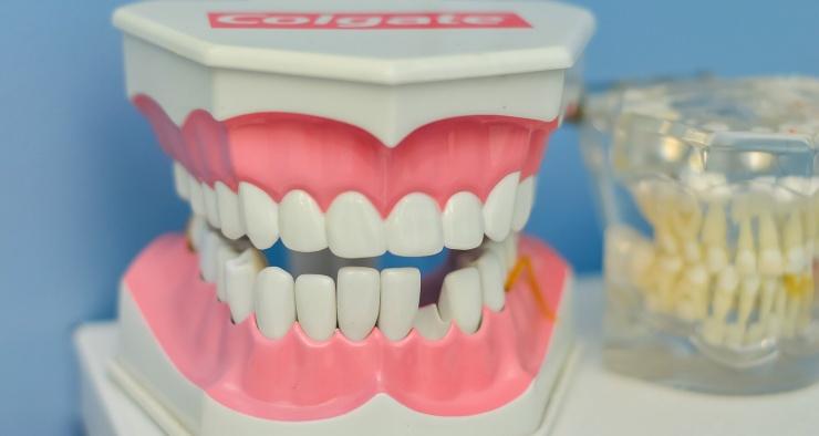 Что стоматологи делают с зубами после удаления