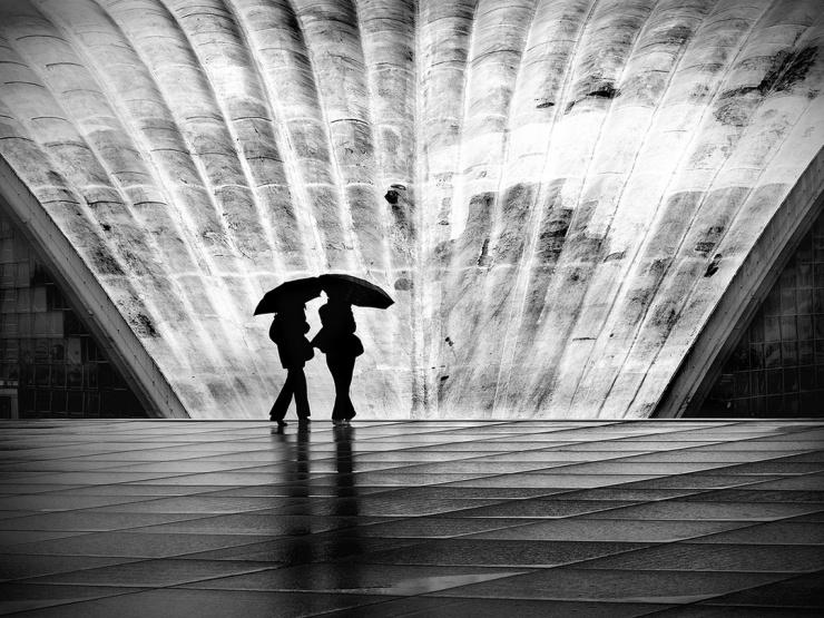 Черно-белые портреты природы и архитектуры Нины Папиорек (29 фото)