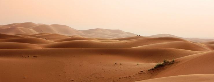 Почему в пустыне холодно ночью
