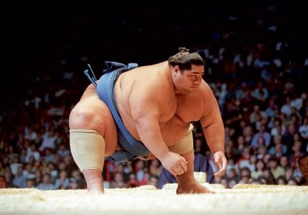 Три антисовета от сумоистов для решивших похудеть