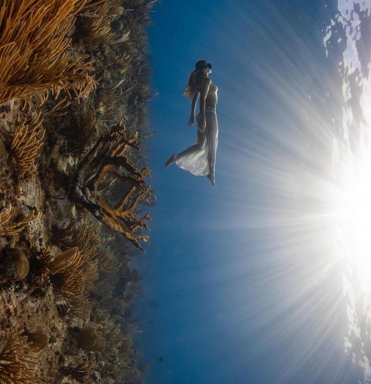 Захватывающие подводные фотографии Джейсона Вашингтона