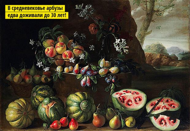 Что ели наши предки персики размером с черешню, фиолетовая морковь и пятисантиметровые арбузы