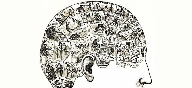 Как тренировка памяти «перепрошивает» мозг за полтора месяца