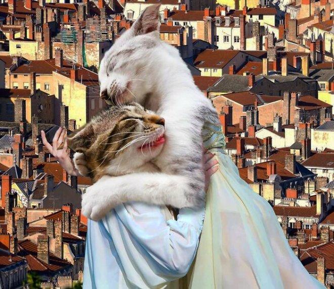 Неожиданные смешные коллажи от турецкого художника