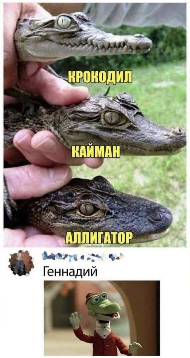 Шутки и мемы из Сети (28/08/2021)