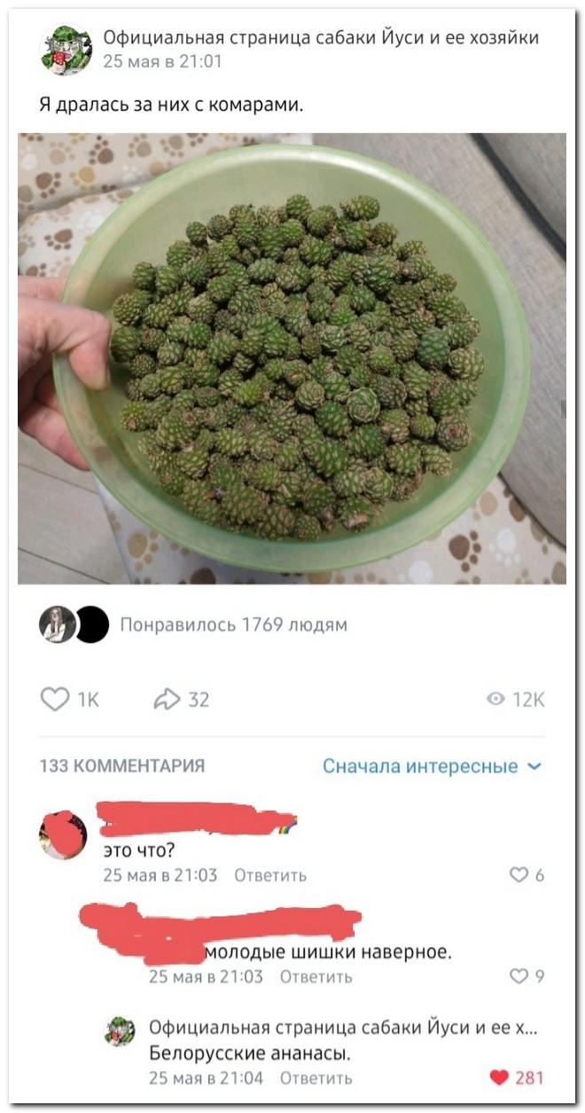 Забавные комментарии из социальных сетей от 7.06