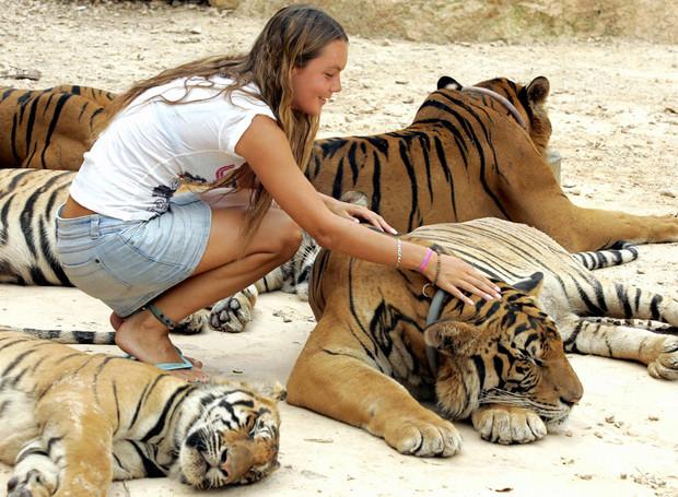 5 популярных заблуждений о животных, в которые все верят