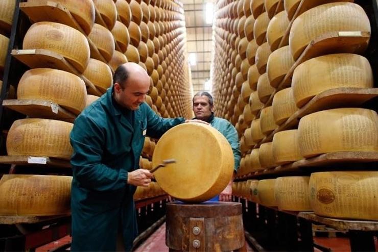 Банк сыра в Италии